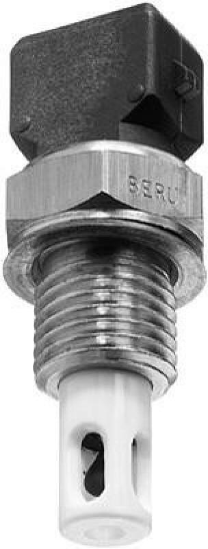 BERU Sensor, Ansauglufttemperatur