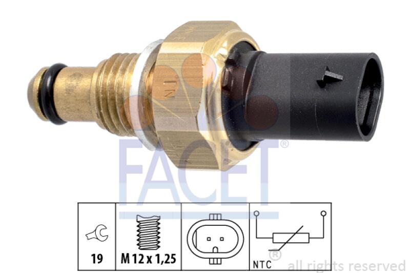 FACET Sensor, Kraftstofftemperatur