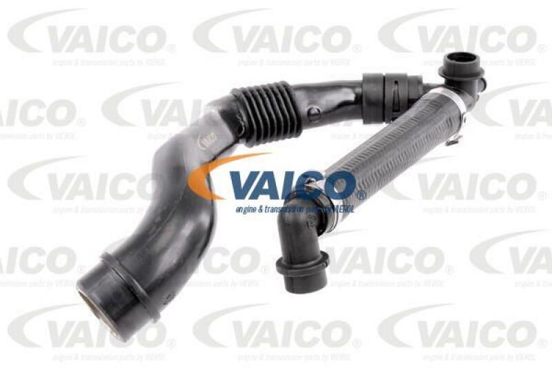 Schlauch, Zylinderkopfhaubenentlüftung Original VAICO Qualität