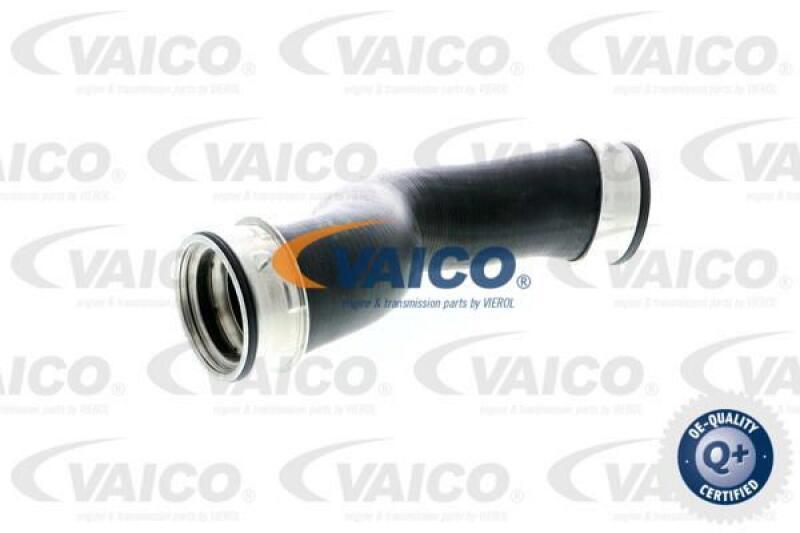 Ladeluftschlauch Original VAICO Qualität